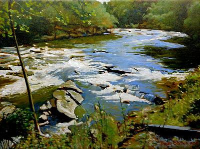 """Rapids on the Tuckasegee"" purchased by Sandra Thompson"