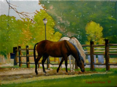 """Pastureland Shade"" purchased by Mike Marvel"